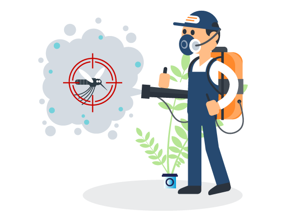Professional Pest Control Redcliffe